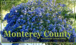 Water-wise Gardening in Monterey County